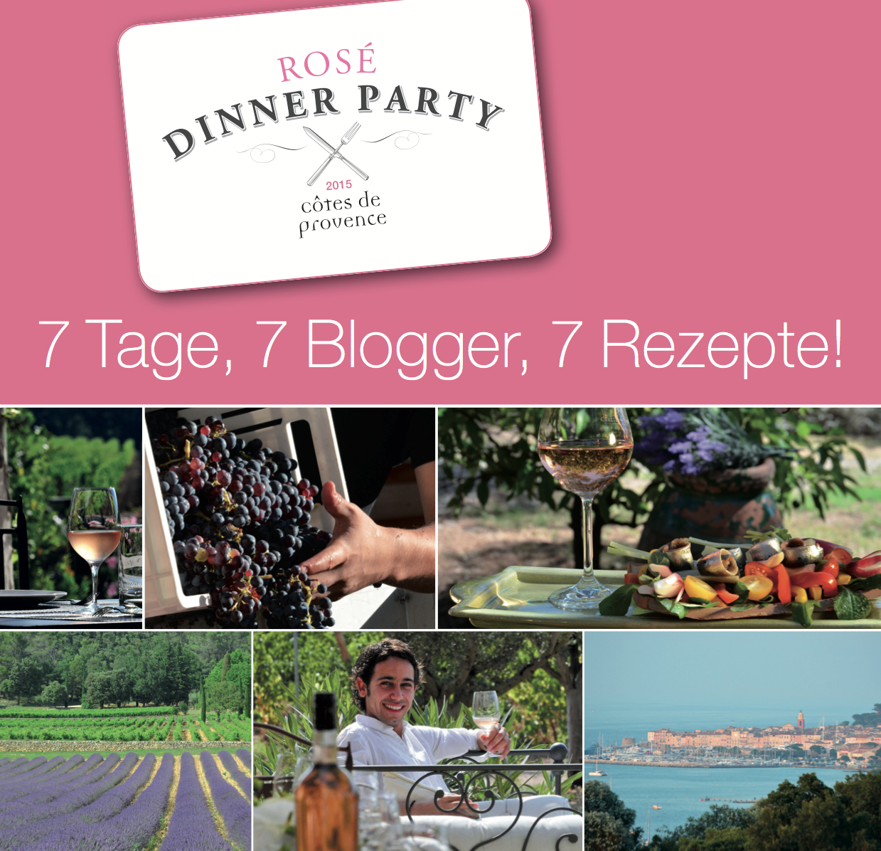 Mit einem Klick kommt ihr zum pdf der Dinner Rosé Party Broschüre